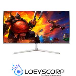 Monitor Teros TE24FHD4 24 Pulg. IPS